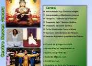 Formación de Terapeutas e Instructores.-