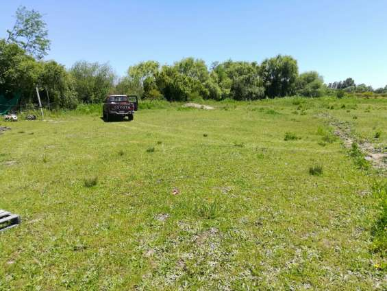 Se venden 4 hectáreas cerca de longaví