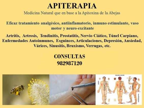 Apiterapia tratamiento curativo con abejas