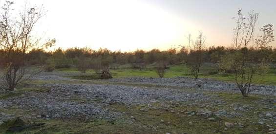 Fotos de Parcelas de agrado 5000m2 - rio achibueno  -linares 5